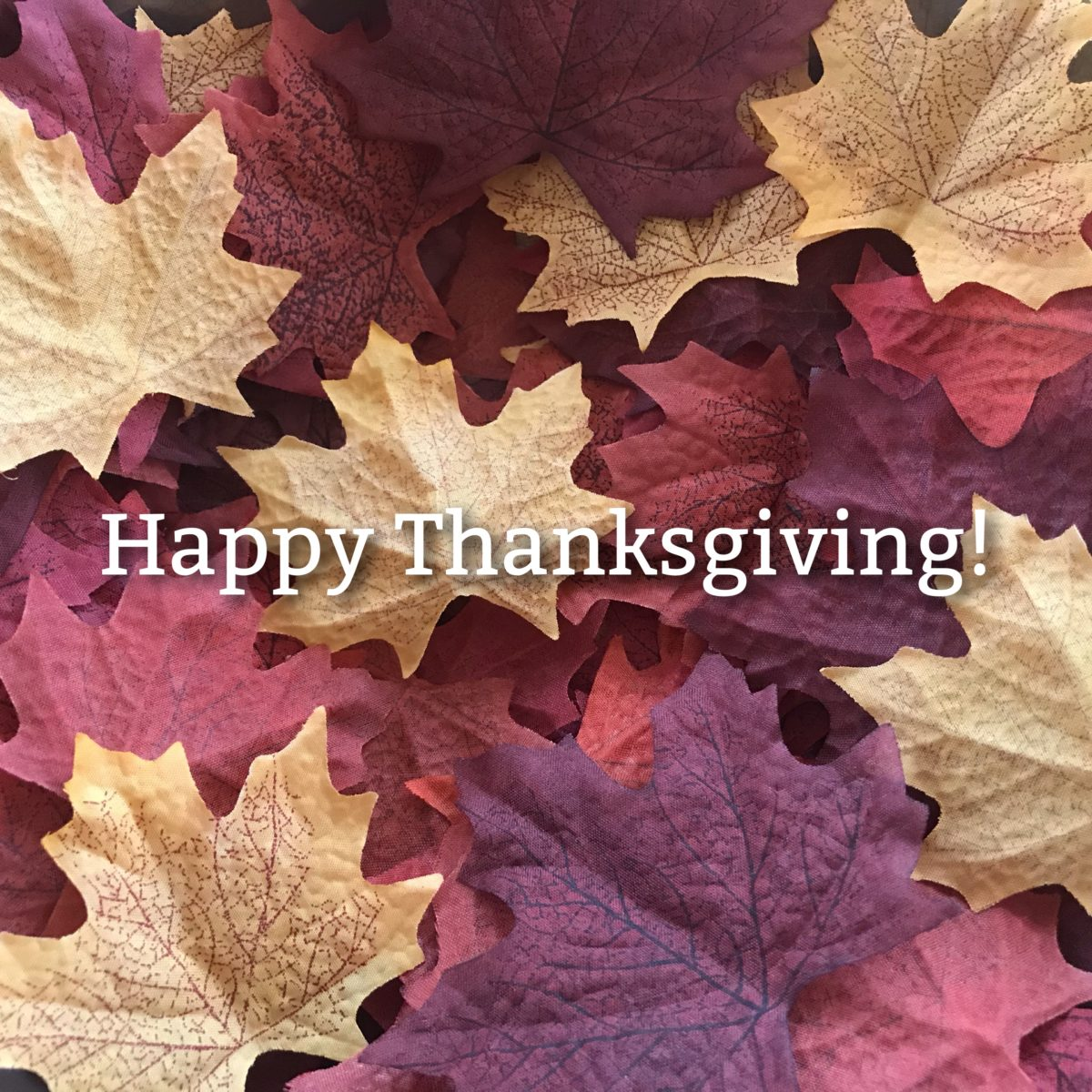 Fall Leaves with Happy Thanksgiving Text